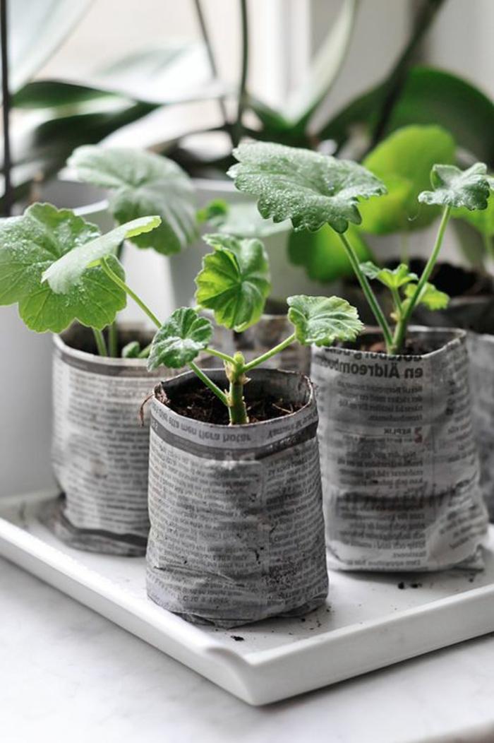 garten verschönern gartenpflanzen gartendeko