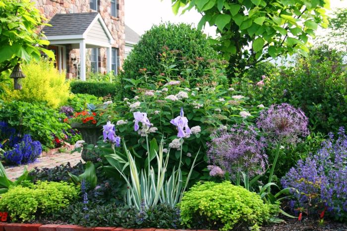 gartenplanung gartenpflanzen arrangieren tipps hausfassade