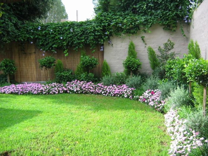 gartenplanung gartenpflanzen blumen kletterpflanzen gartenzaun