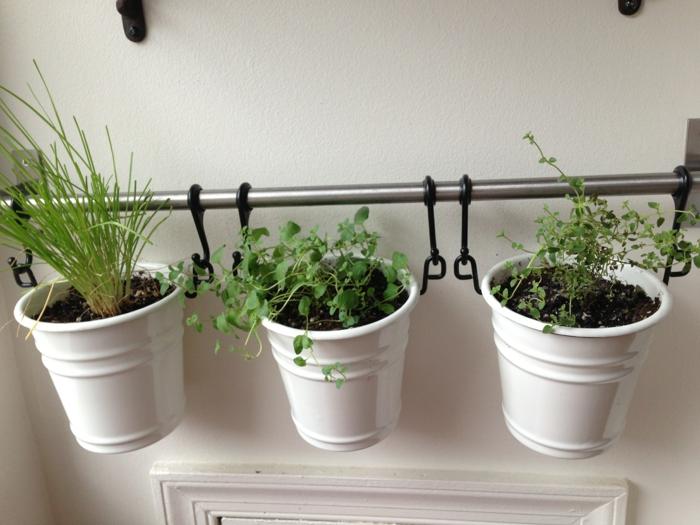 Kräutergarten anlegen: was darf auf Ihrem Balkon nicht fehlen ?
