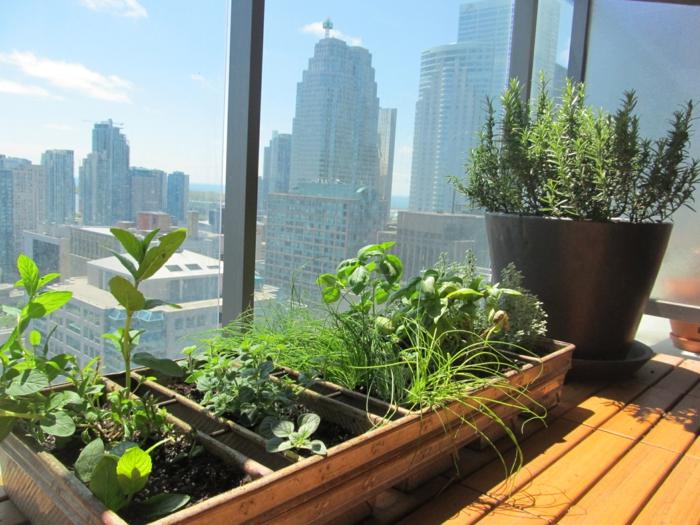 kräutergarten anlegen: was darf auf ihrem balkon nicht fehlen ?, Gartengerate ideen