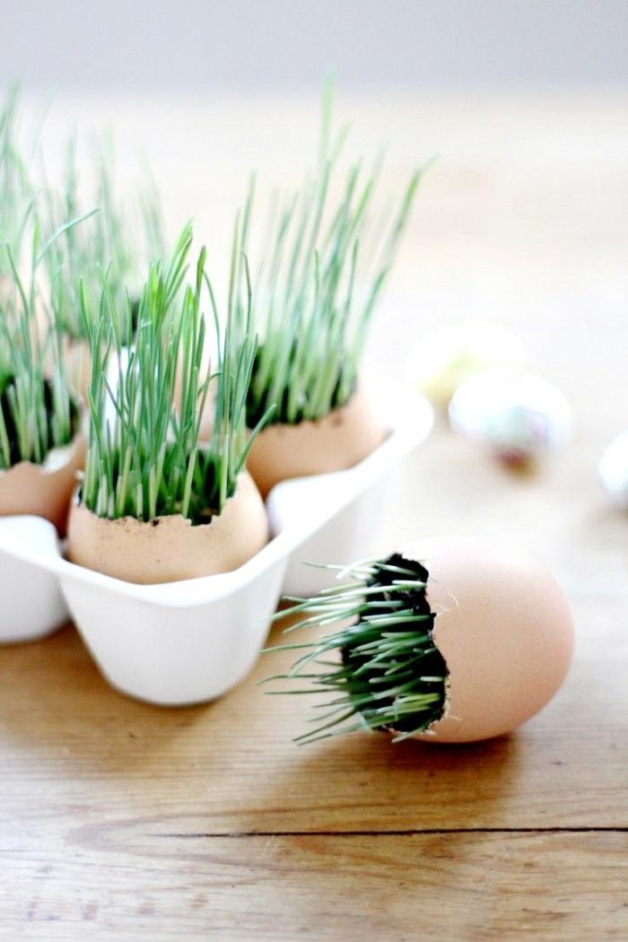 osterdeko basteln eierschalen arrangieren gras