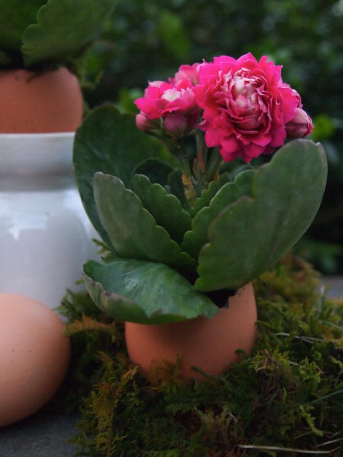 osterdeko basteln eierschalen benutzen vasen pflanzen