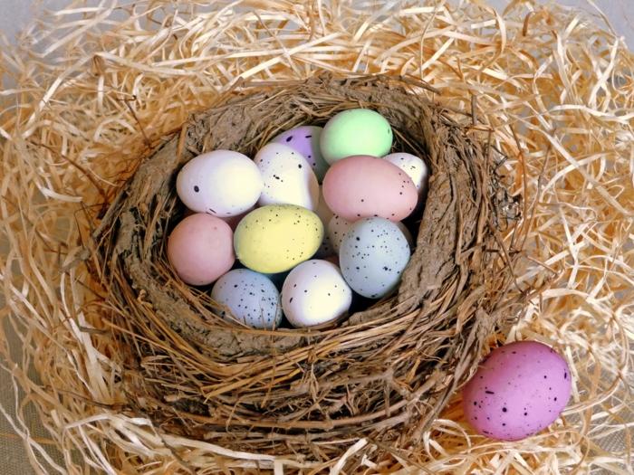 ostereier bemalen pastellfarben wachteleier nest osterdeko