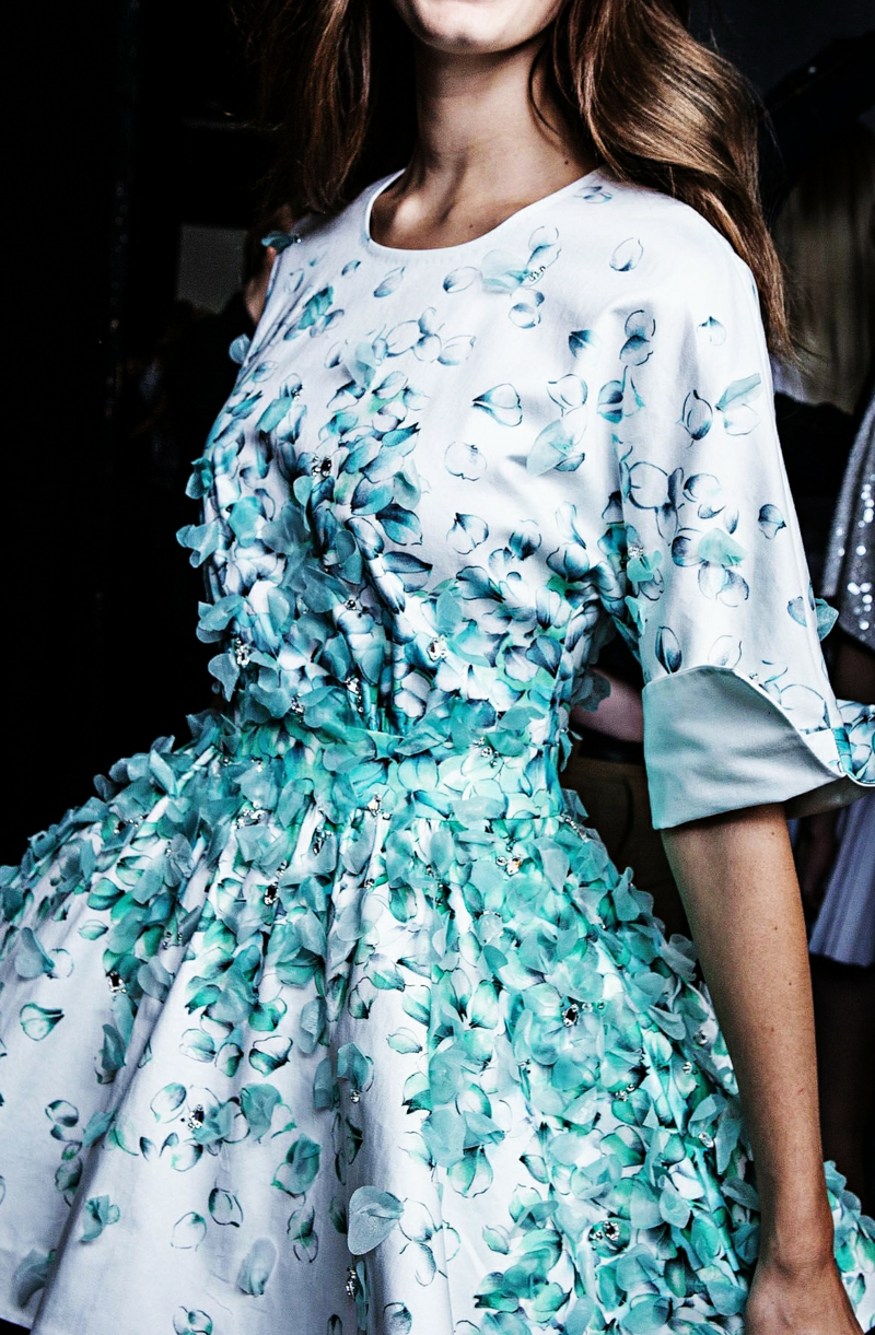 Butterfly Wings On A Dress Fashion