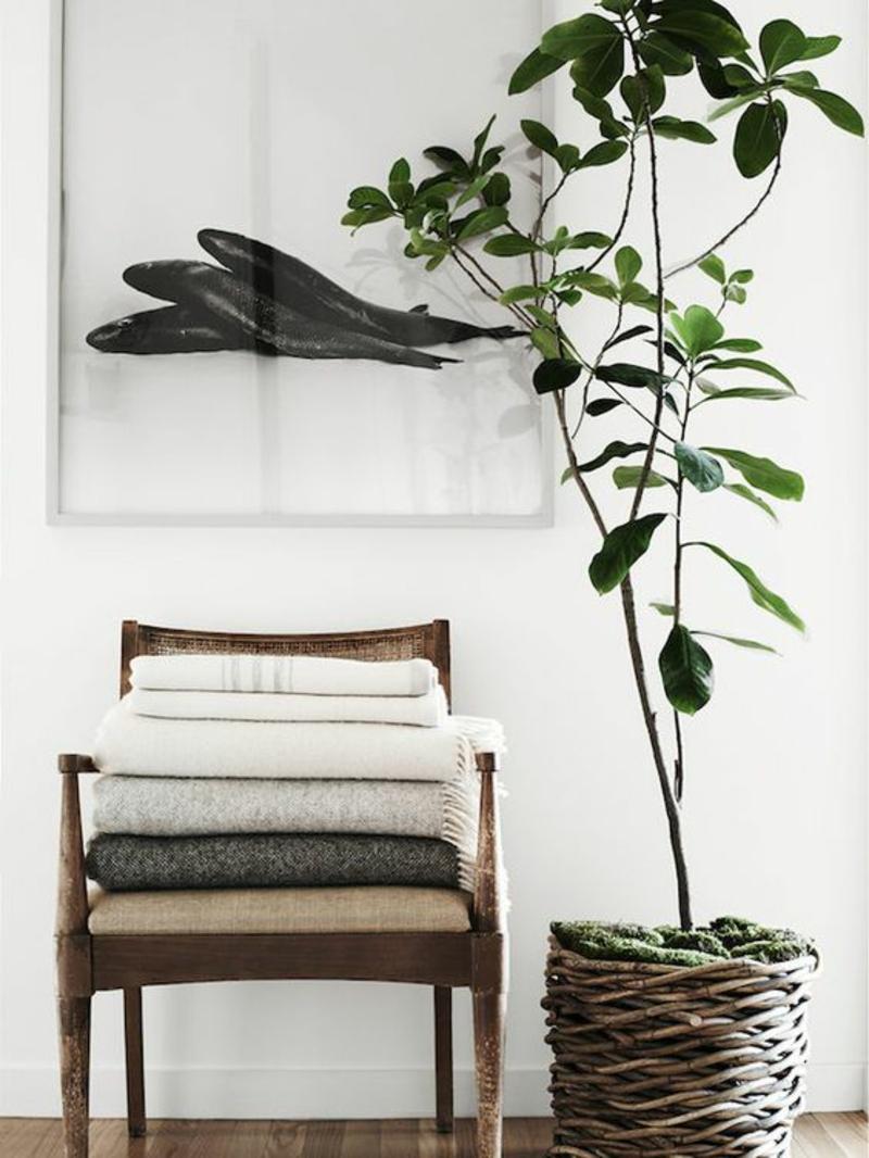 skandinavisches Design Einrichtungsbeispiele Zimmerpflanze pflegeleicht