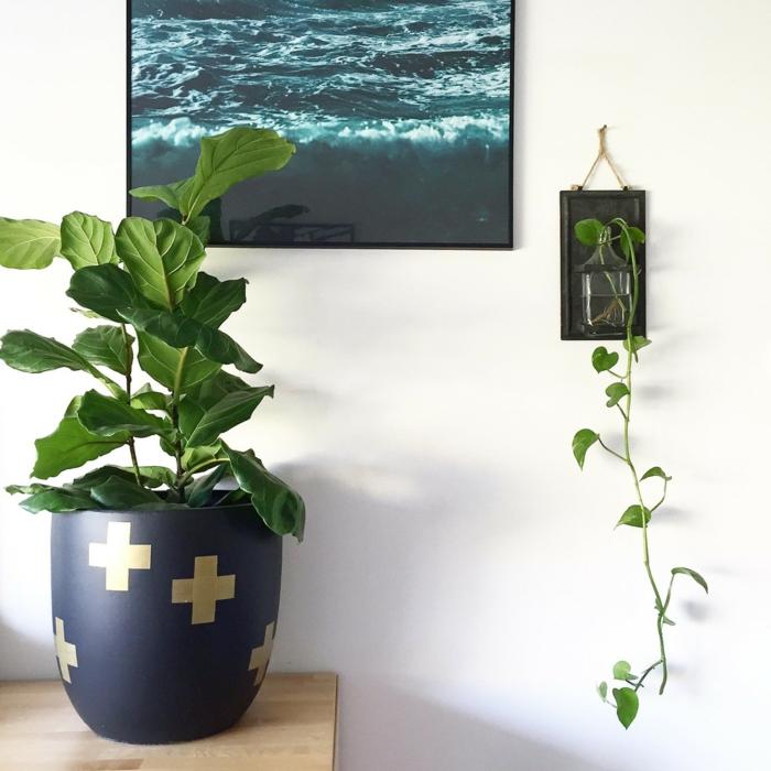 topfpflanzen pflanzen dekoideen wohnideen