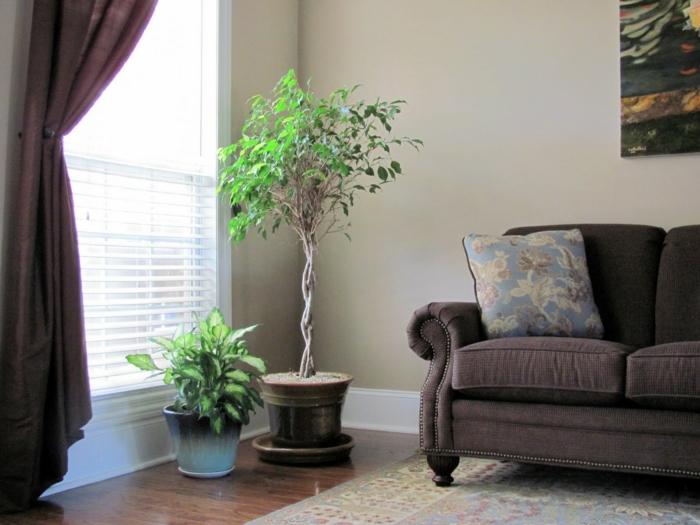 topfpflanzen wohnzimmer dekorieren braune gardinen