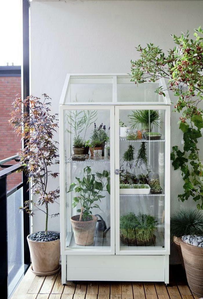 vitrine schrank balkon terrassengestaltung balkonpflanzen