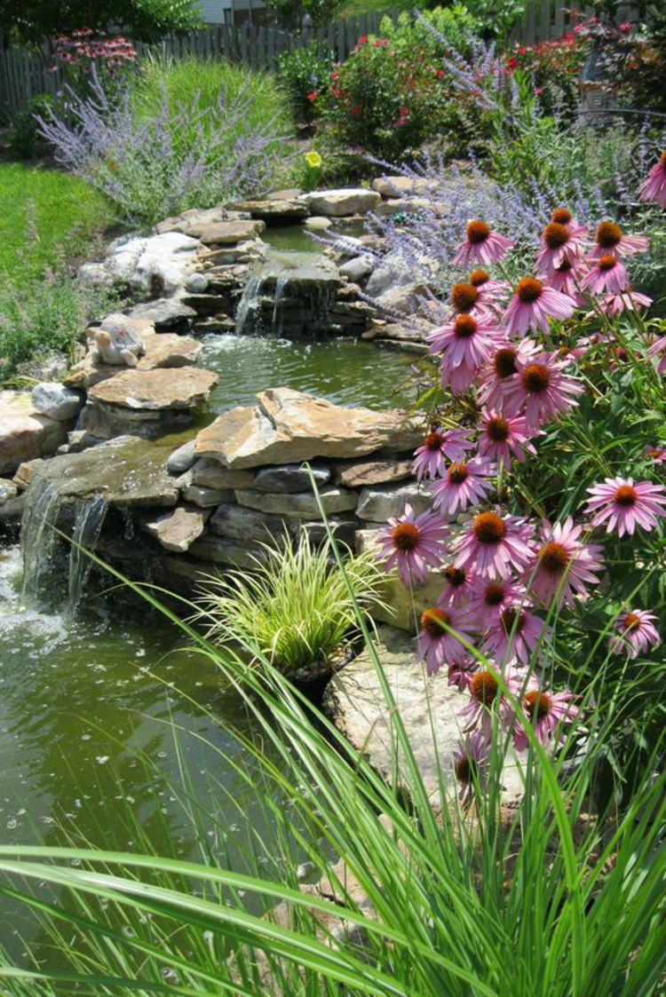 Bilder Gartenteiche Wasserpflanzen Teich stufenartig grüne Wohlfühloase