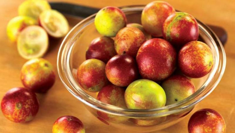 Camu Camu Myrciaria dubia Super Frucht Obst und Gemüse essen
