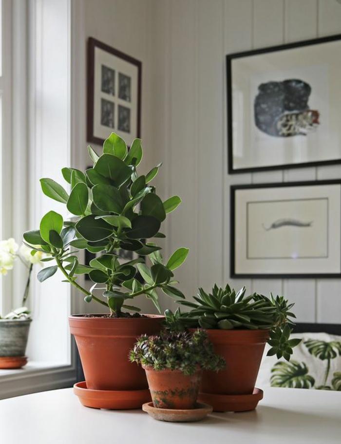 feng shui bilder erfahren sie die bedeutung der typischen feng shui symbole. Black Bedroom Furniture Sets. Home Design Ideas