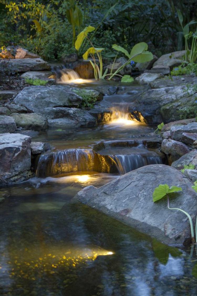 Gartenteich Bilder Gartenbeleuchtung Wasserpflanzen Teich