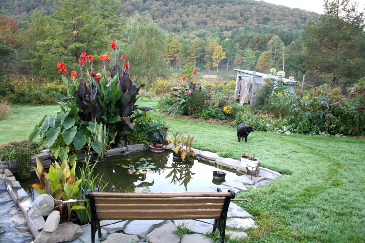 Gartenteich Bilder Gartenideen Gartenpflanzen Holzbank