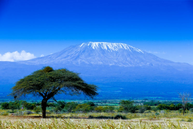 Kilimanjaro Gipfelstürmer Bergsteiger Ziele Bergen aus der ganzen Welt