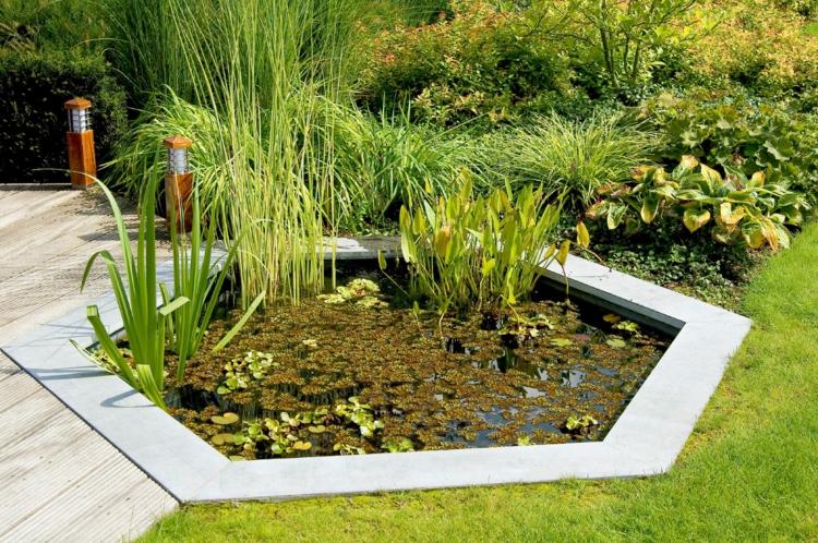 Hinterhof Gartenteich japanischer Garten Ideen Wasserpflanzen Teich