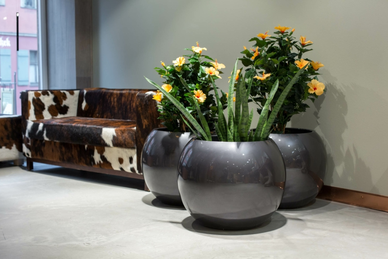 Pflanzkübel Fiberglas Zimmerpflanzen Deko Ideen Wartezimmer