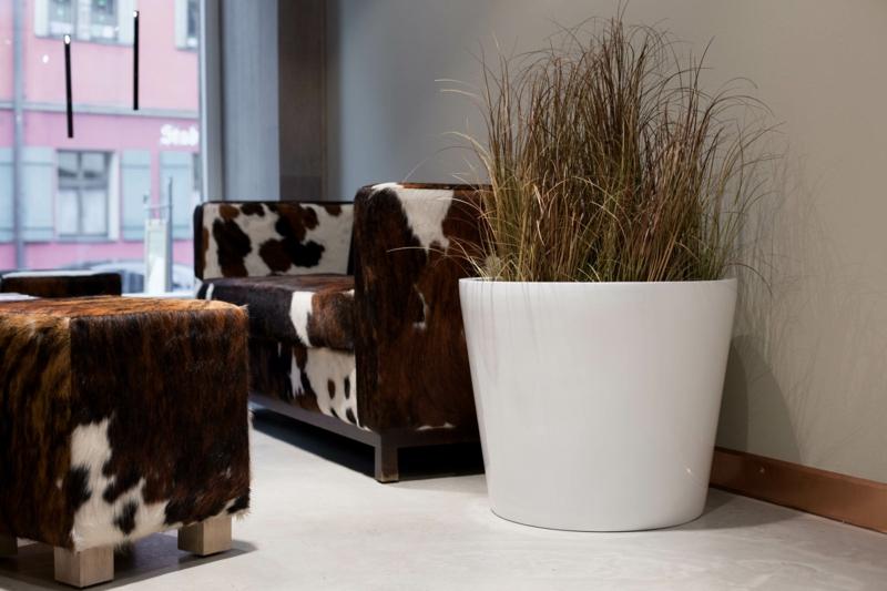 Pflanzkübel Fiberglas Zimmerpflanzen Kuhfell Sofa