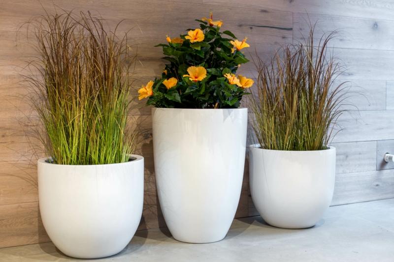 Pflanzkübel Fiberglas weiß verschiedene Größe Zimmerpflanzen