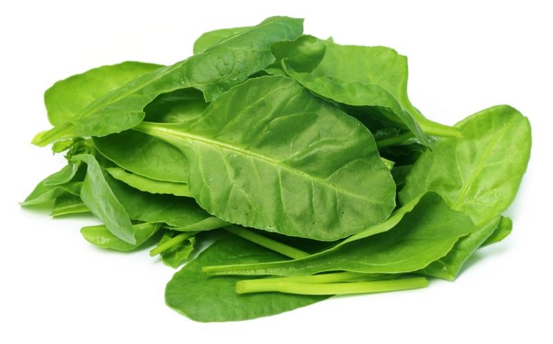 gesunde Ernährung bei Schilddrüsenerkrabkung Spinat