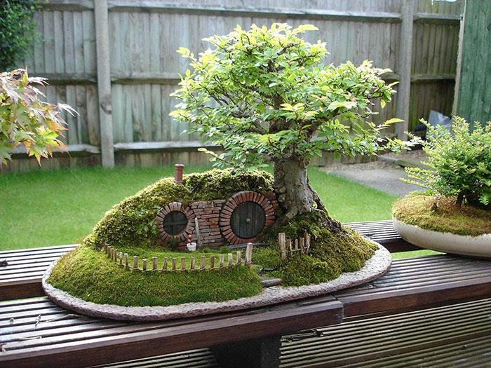 bonsai bäume hobbit hole