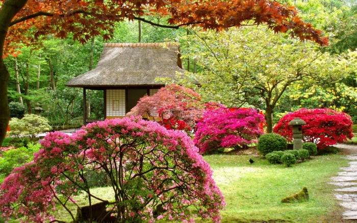 chinesischer garten blütenstäucher gartenhaus pavillion bäume park
