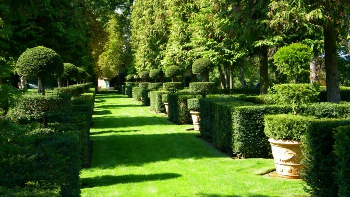 gartengestaltung französische gaten ideen grünes gras buchsbaum