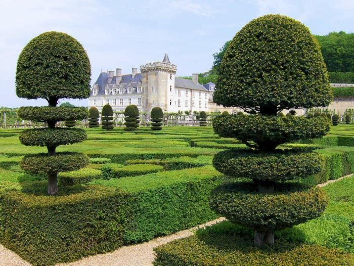 gartengestaltung französischer garten nadelbäume garten ideen