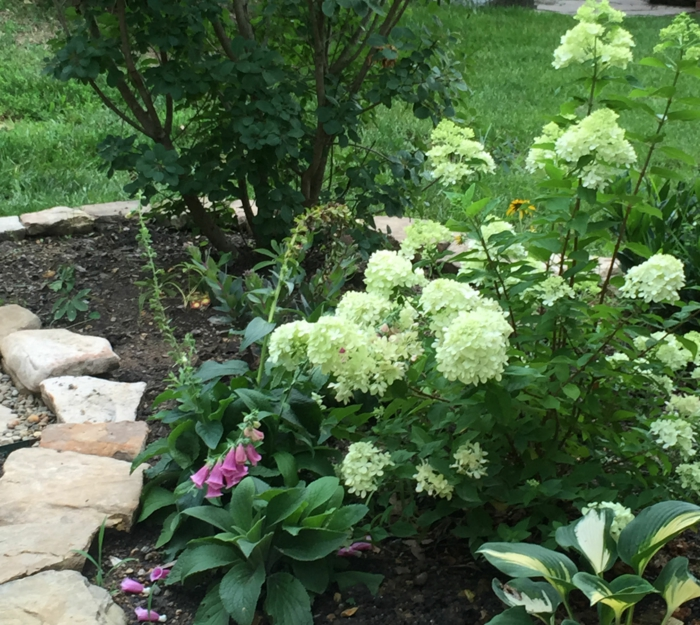 gartengestaltung gartenpflanzen auswählen arrangieren steine blumenbeete