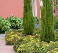 Wie gestalte ich meinen Garten im italienischen Stil?