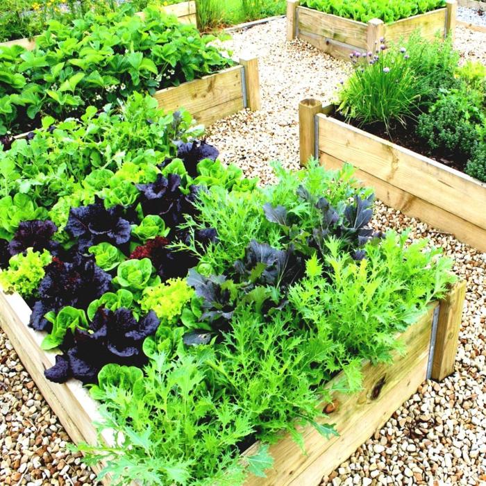 gartenideen garten gestalten gemüse einpflanzen