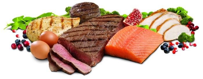 gesundes essen proteine fleisch fisch eier beeren geflügel
