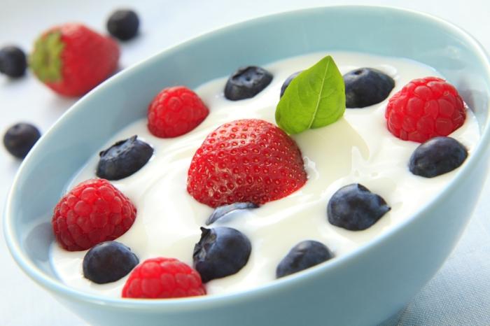 basische ernährung erkältung schnupfen prbiotisch joghurt