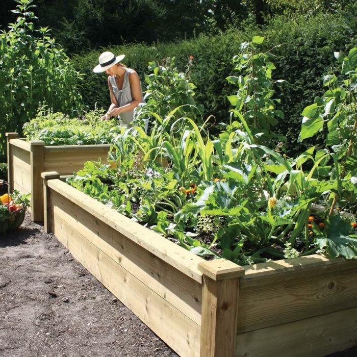 hochbeete holz garten gestalten ideen pflanzen - Idee Fur Gartengestaltung