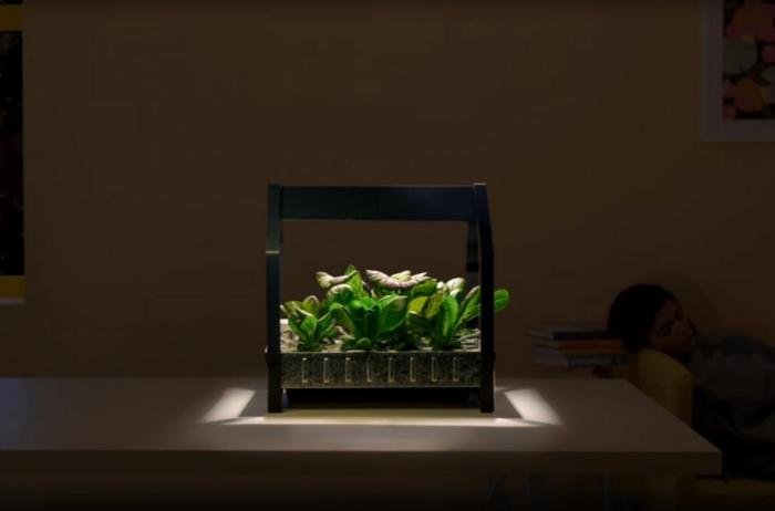 ikea garten indoor salat licht