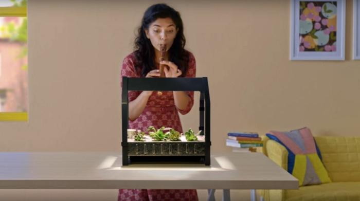 ikea garten indoor salat vorbereitung betrachtung grün