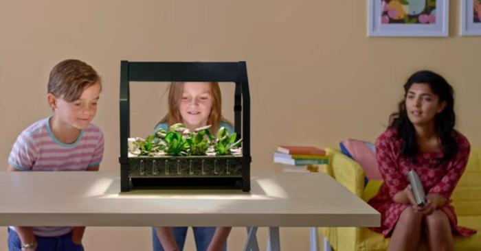 ikea garten indoor salat vorbereitung betrachtung