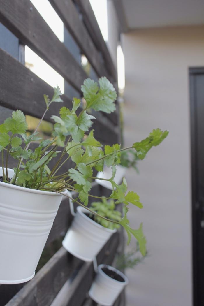 Schon Ikea Gartengestaltung Mit Ikea Zubehör Titel2 Kräuter Garten Koriander