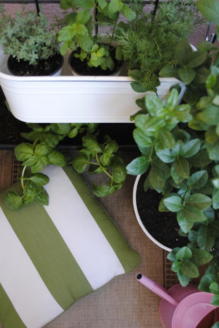 Lieblich Ikea Gartengestaltung Mit Ikea Zubehör Titel2 Kräuter Garten Standart