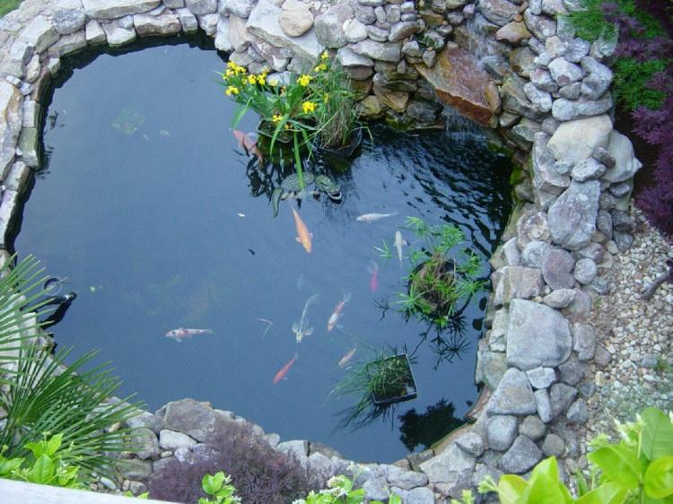 inspirierende Gartenteich Bilder Gartenideen Teich mit Fischen Fischteich