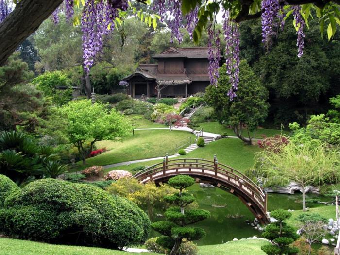 japanischer garten holzbrücke teich nadelbäume akazien