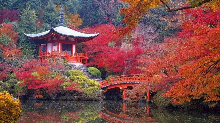 japanischer garten park wald herbst asiatische architektur tempel