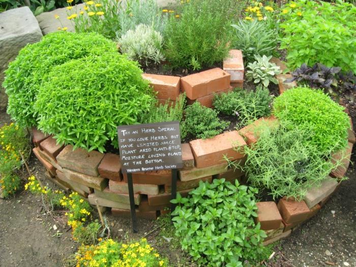 kräuterspirale stein kleine steine voller blüte bohnenkraut Kräuterspirale bauen