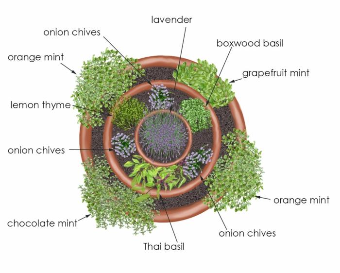 kräuterspirale stein kleine steine voller blüte kreise Kräuterspirale bauen