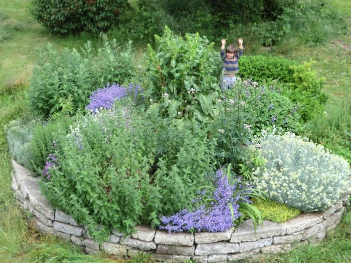 kräuterspirale stein kleine steine voller blüte prächtige lavendel Kräuterspirale bauen