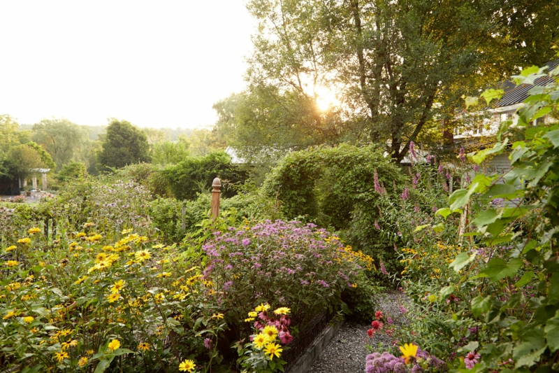 kreative Gartenideen Haus üppige Gartenpflanzen Sommer Gartenatrbeit