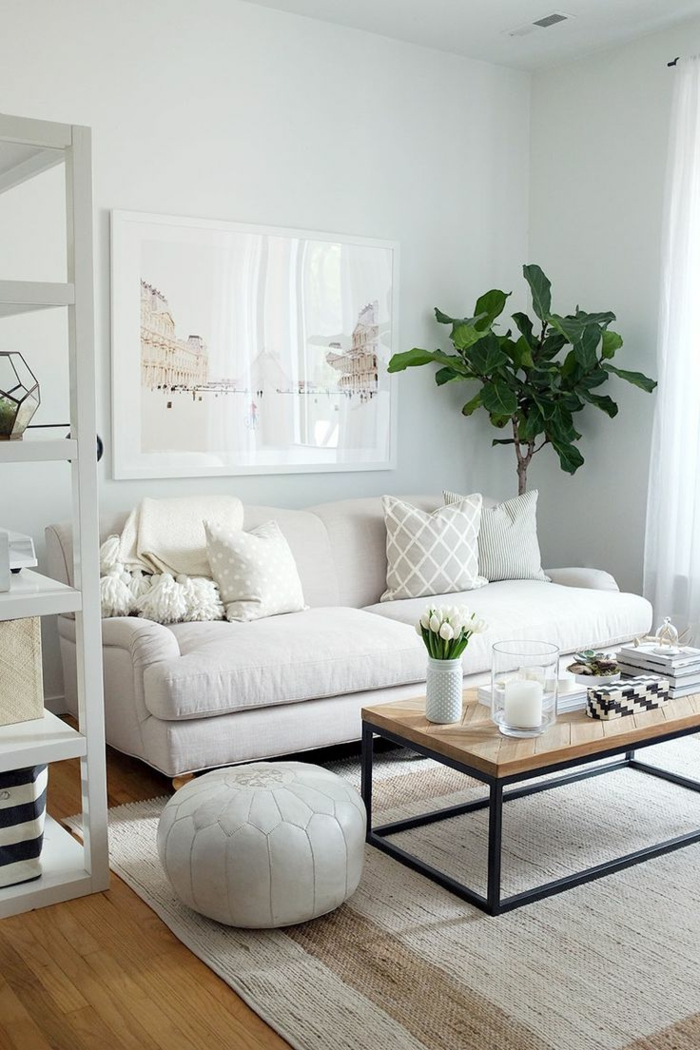 teppich wohnzimmer helles sofa pflanze weiße wände