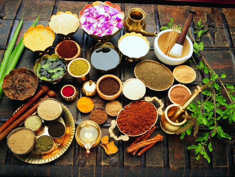 Ayurveda Ernährung ayurvedische Gerichte indische Gewürze