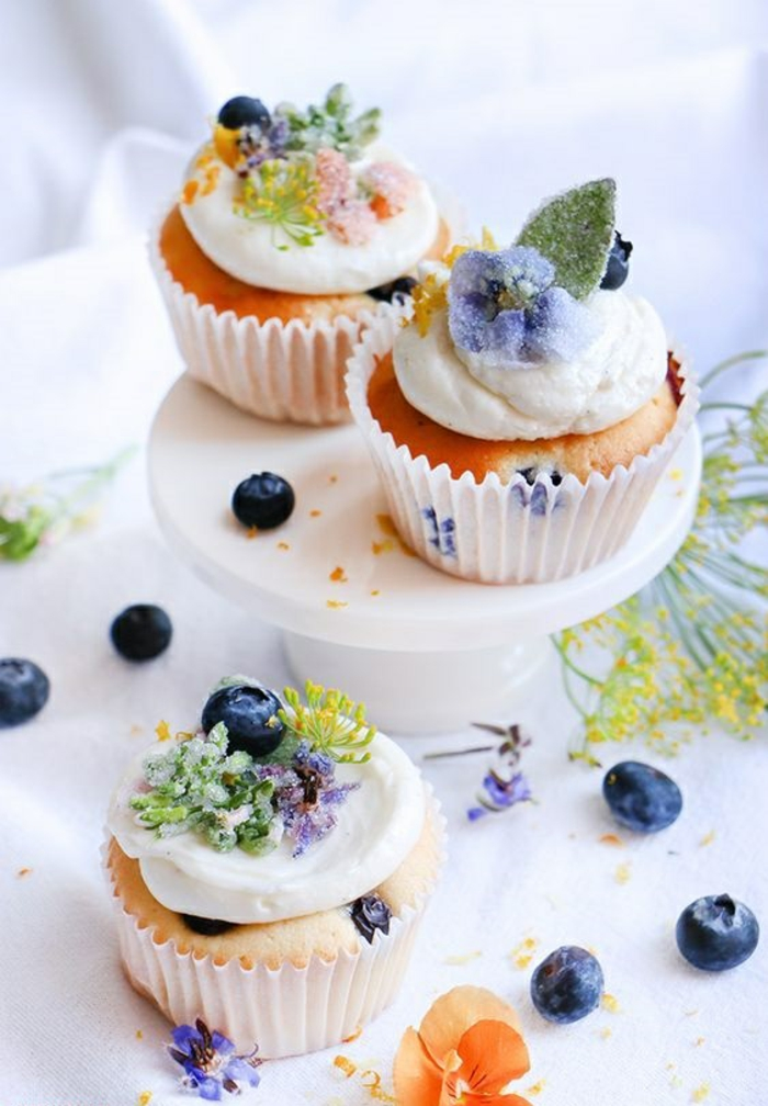 Blaubeer Cupcakes Rezept kleine Törtchen selber backen