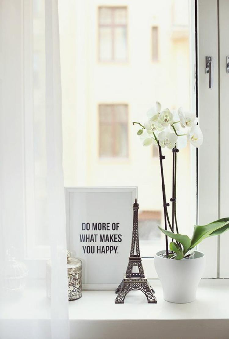 Fensterdeko Ideen Küche Zimmerpflanzen weiße Orchidee Dekoartikel